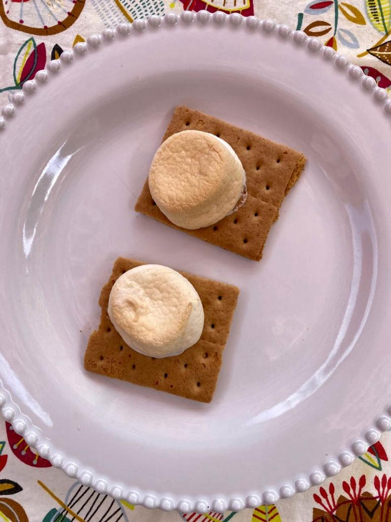 graham cracker roasted marshmallows