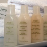 web Palmsthe palms aveda spa