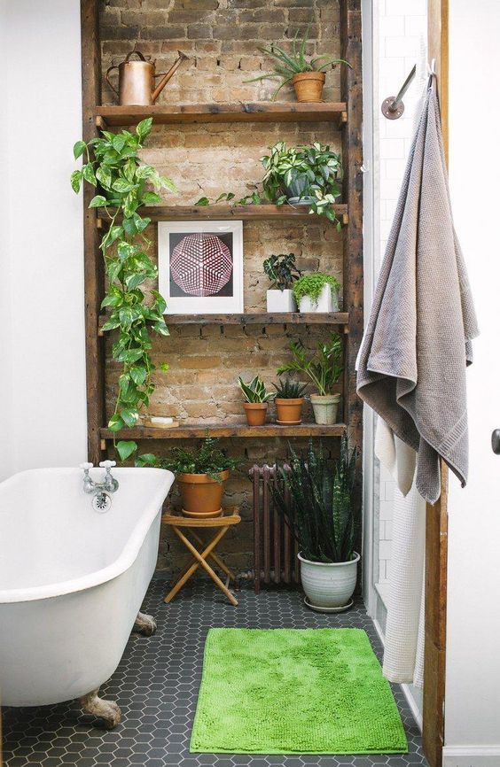 brick wall, plants, bathroom, shelving