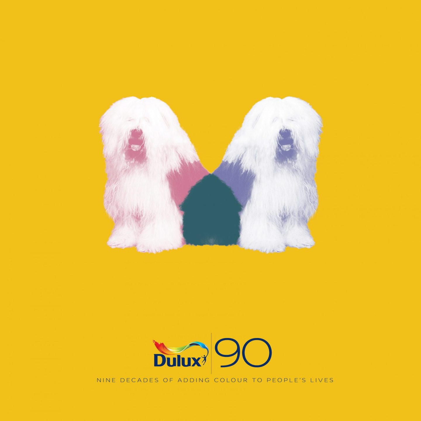 dulux is 90 anniversary book