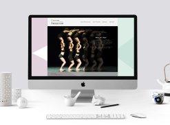 Site web réaliser avec le cms Wordpress