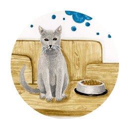 illustration-chat-vetinparis-melanie-voituriez