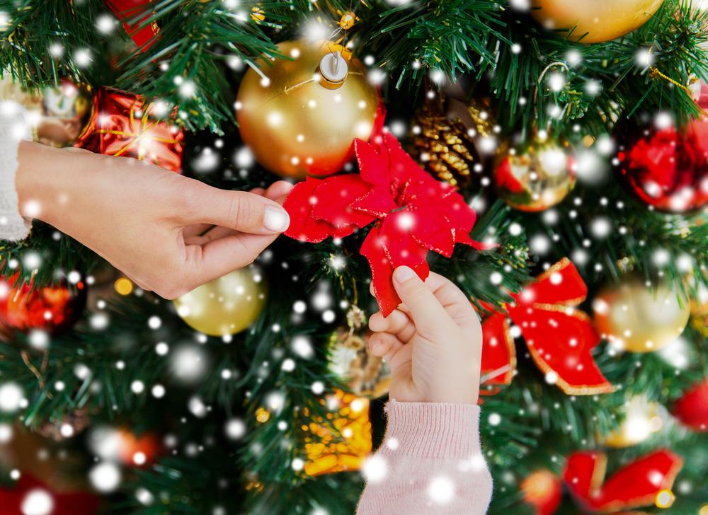 Decorazioni Natale Fai Da Te Melarossa