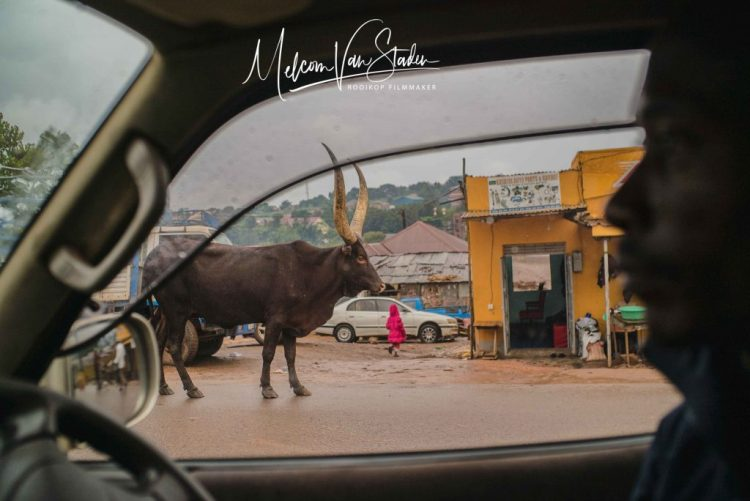 Melcom Van Staden - Traffic in Kampala is something, well different