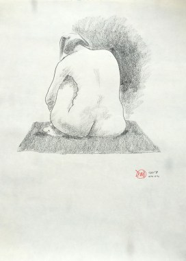 david-meldrum-IMG_2928