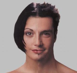androjen ile ilgili görsel sonucu