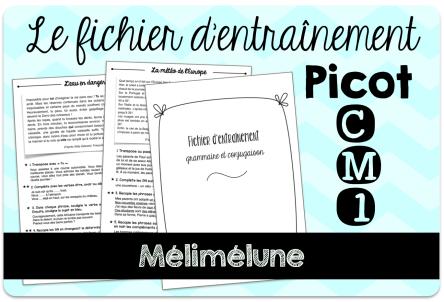 Mon Fichier Pour Utiliser La Methode Picot En Cm1