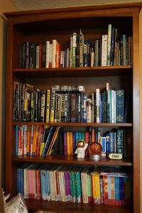 Another bookcase in Melina Druga's office