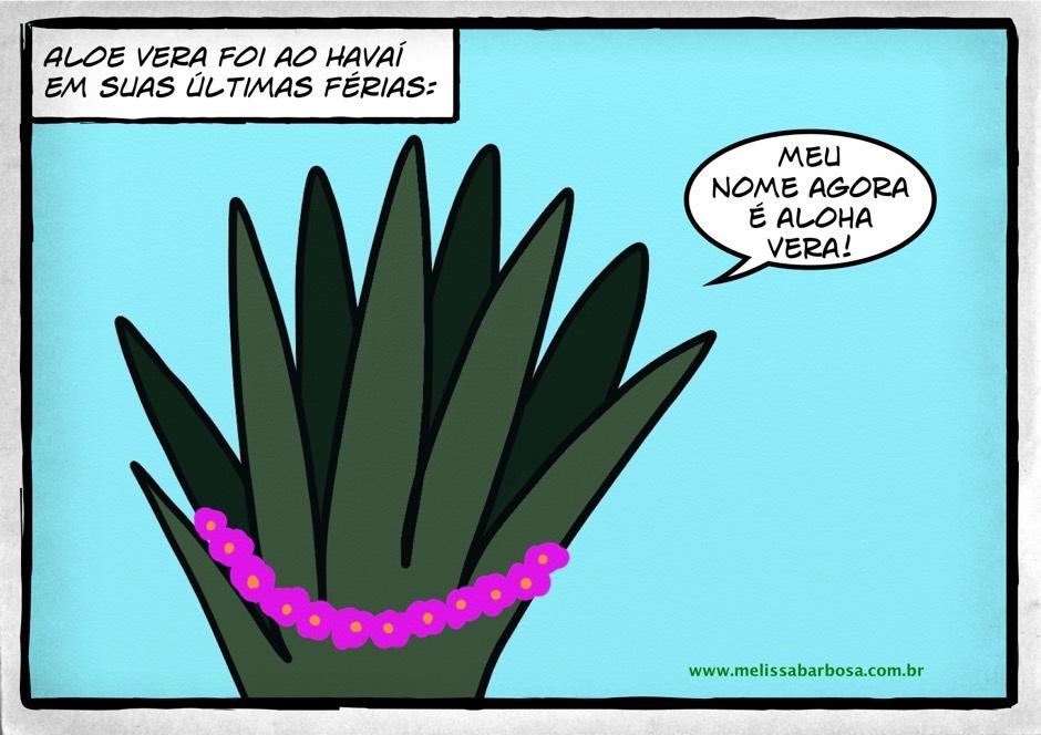 Aloe Vera foi ao Havaí nas suas últimas férias.  Meu nome agora é Aloha Vera!