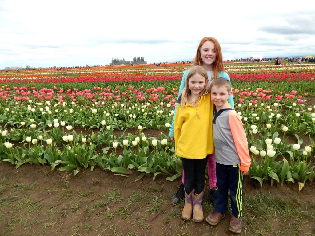 woodburn-tulip-festival-20