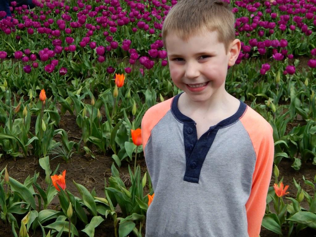 woodburn-tulip-festival-24