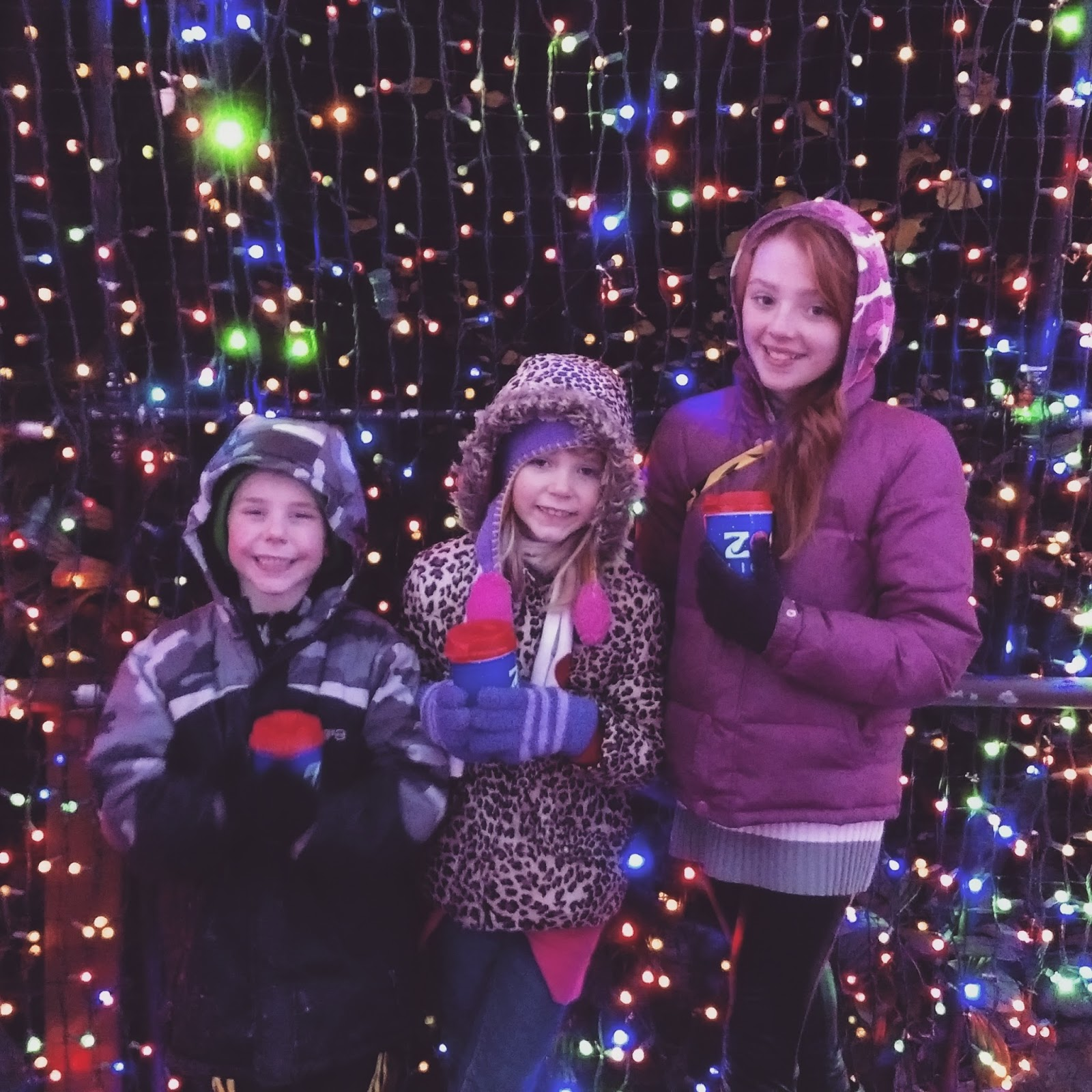 The Oregon Zoo Has Provided Me With 4 Additional Tickets To Visit Their  Annual Holiday Event Zoolights.