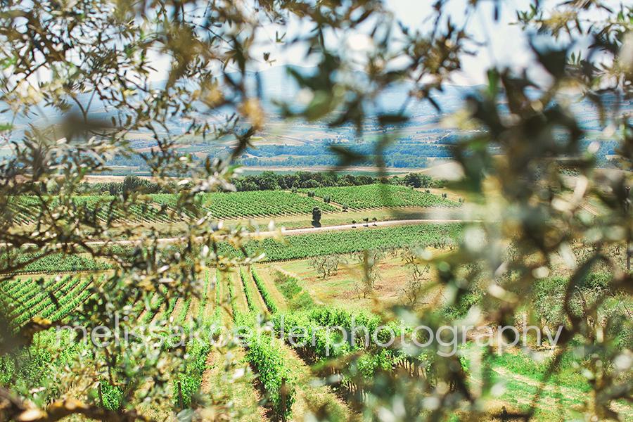 tuscany-1-blog