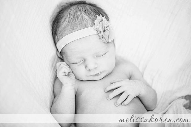 concord at home newborn photography 11