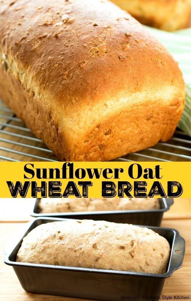 Sunflower Oat Wheat Bread