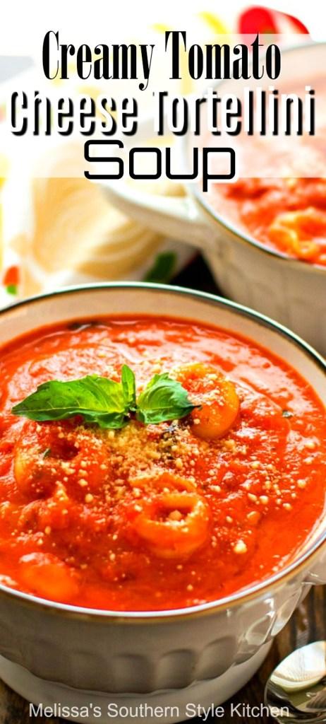 Creamy Tomato Cheese Tortellini Soup
