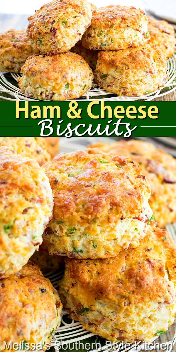 These Ham and Cheese Biscuits are filled with colby jack cheese and smoky ham. They're a spectacular way to enjoy classic biscuits in a new way. #hamandcheesebiscuits #hambiscuits #southernbiscuits #biscuitrecipes #ham #cheesebiscuits #brunch #breakfast #ham #holidaybrunch #christmas #easterbrunch #southernfood #southernrecipes