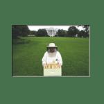 Ο Μελισσοκόμος του Λευκού Οίκου
