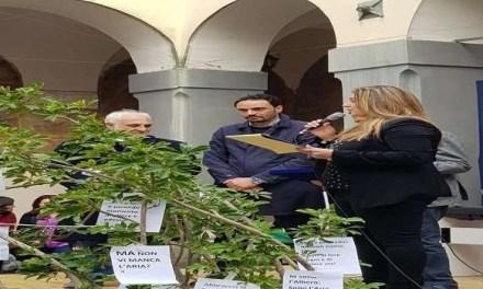 """Sant'Antimo. Il premio """"Goccia d'oro"""" al Dottor Biagio Chiariello durante il """"Green Fest"""""""
