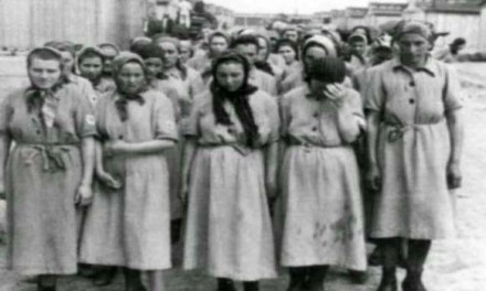 """Il """"grande progetto"""" di Heinrich Himmler : i bordelli dei lager"""