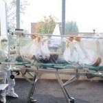 Covid-19: nuovi casi negli ospedali di Castellammare e di Pozzuoli