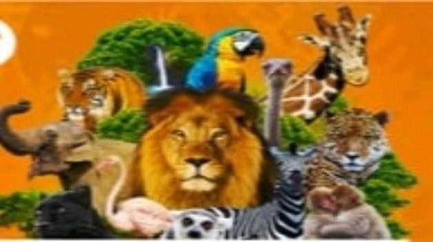 Buone notizie per gli amanti degli animali. Riaprono gli zoo