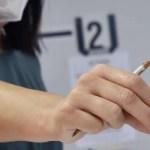 Elezioni – Politica. Affluenza alle urne ore 23.00