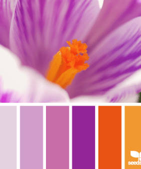 Crochet Along Colors