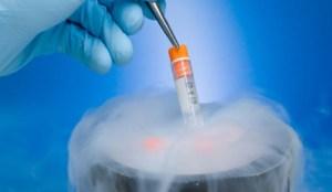 La congelación de óvulos y la maternidad postergada
