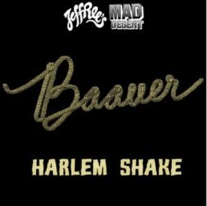 """Artwork """"Harlem Shake"""" Baueer"""