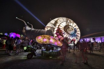 Coachella 2013 | © Rich Polk/Getty Images