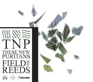 These New Puritans - Field Of Reeds - Artwork