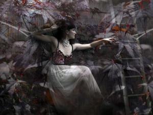 Erika – Onna-Bugeisha - Artwork