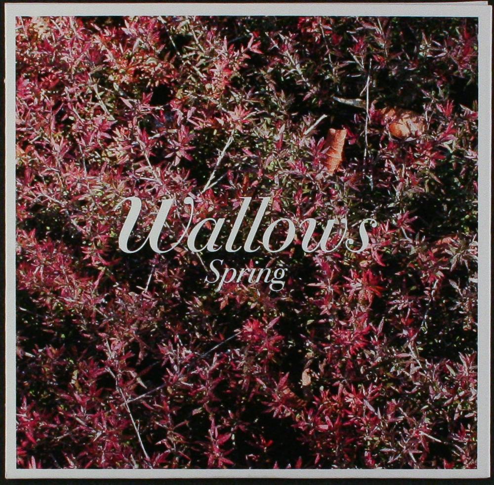 Znalezione obrazy dla zapytania Wallows - Spring EP