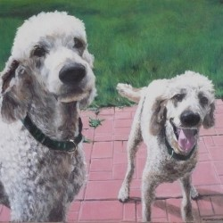 "Alfie and Talie, 2012, Full Colour Acrylic Painting on Canvas, 16""x20"""
