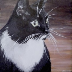 "Gizmo, 2010, Tuxedo Cat Portrait, Full Colour Acrylic Painting on Canvas, 12""x12"""