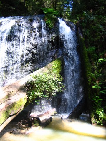 waterfall at Fern Canyon