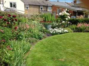 Best Overall Garden and Medium Garden category winner - Jane Pinkster