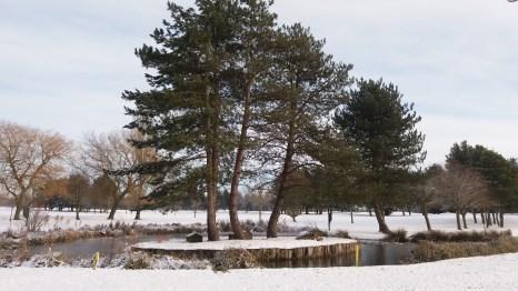 Island on 18th Pond