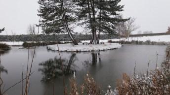 18th Pond December 10th