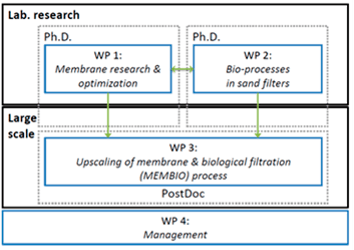 MEM2BIO structured in four work packages, with the fourth work package consisting of management.