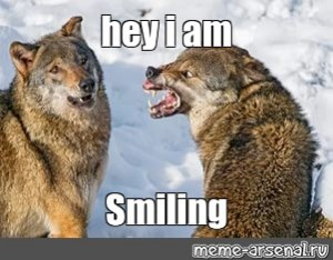Create Meme Wolf Wolf Angry Wolf Wolf Pictures Meme Arsenal Com