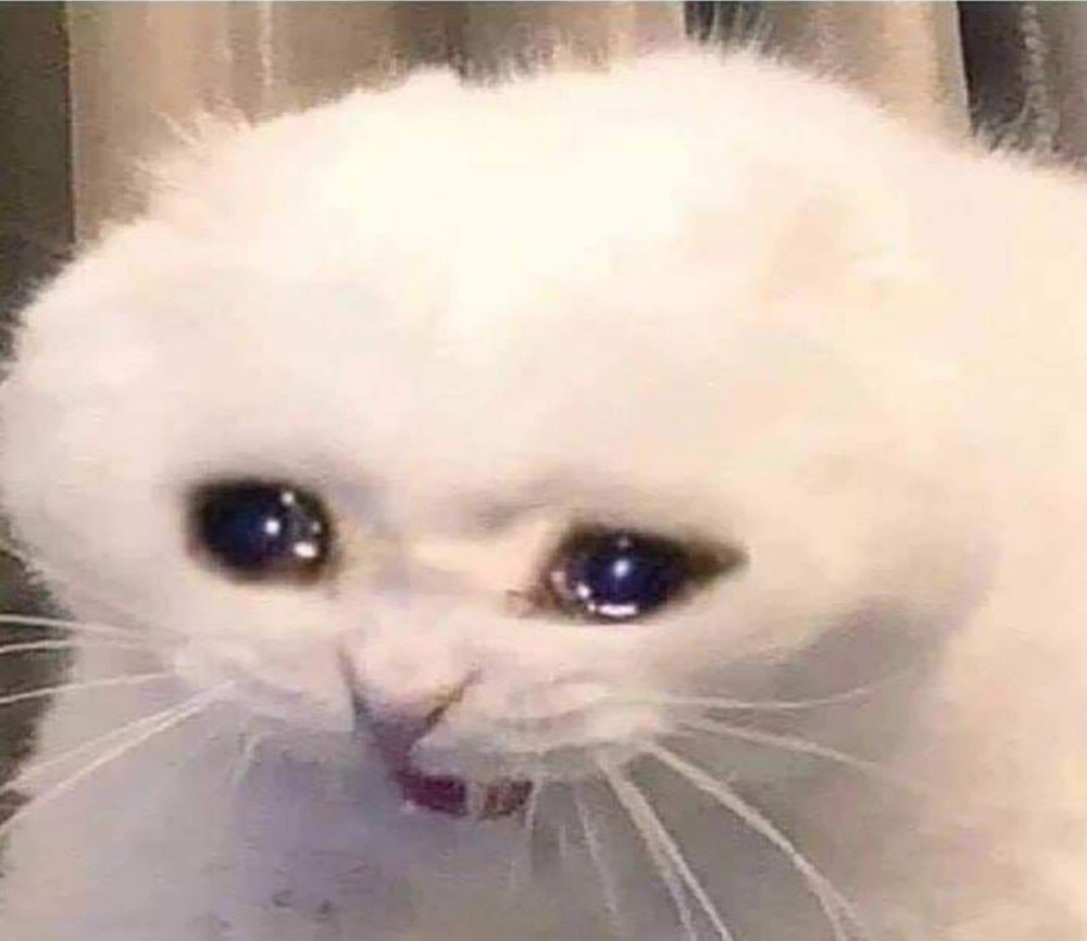 What If We All Start Using The Cats Movie To Make Those Crying Cat