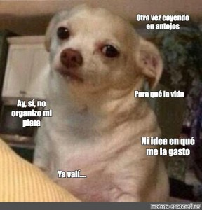 Create Meme Yvyy A Dog Meme Generator The Dog Pictures