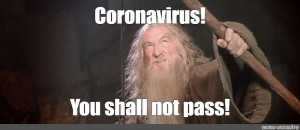 You Shall Not Pass You Shall Not Pass Gandalf The Gray Meme