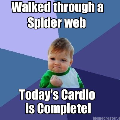 Meme Creator Funny Walked Through A Spider Web Today S Cardio Is