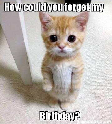 Meme Creator Funny How Could You Forget My Birthday Meme Generator At Memecreator Org