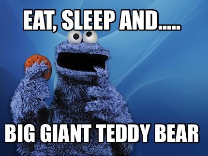 Meme Creator Funny Eat Sleep And Big Giant Teddy Bear Meme