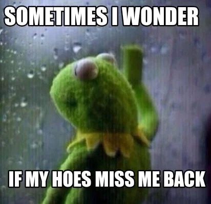Meme Creator Funny Sometimes I Wonder If My Hoes Miss Me Back
