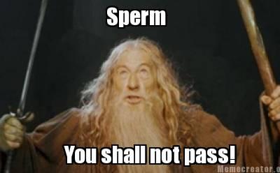 Gandalf You Shall Not Pass Sticker